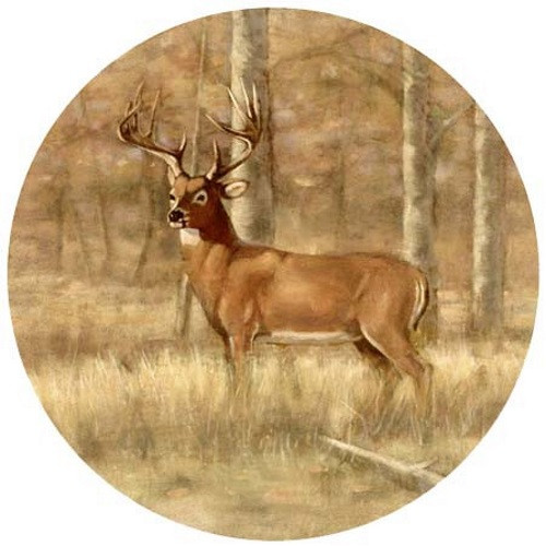 Whitetail Deer Coaster Set