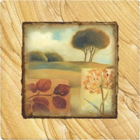 Down to Earth Coaster Set - Naturals Collection