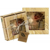 Ethereal Bloom I Coaster Set - Naturals Collection