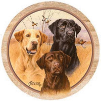 Great Hunting Dogs Coaster Set