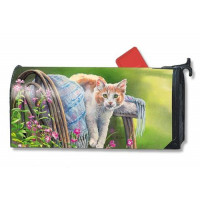 Kitty Cool Down Mailbox Cover