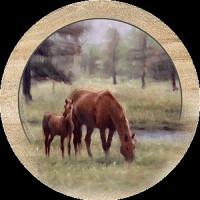 Mare & Foal Coaster Set
